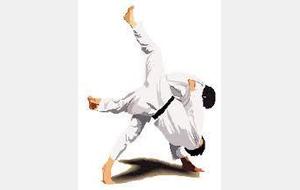 Animation Régionale Ceinture de Couleurs - judo club mérois mer c1ef160f09a